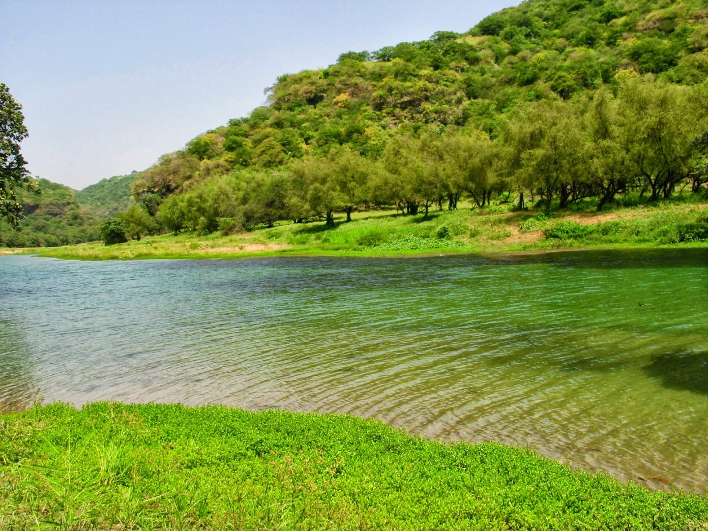 Relaxing in a natural spring in Oman